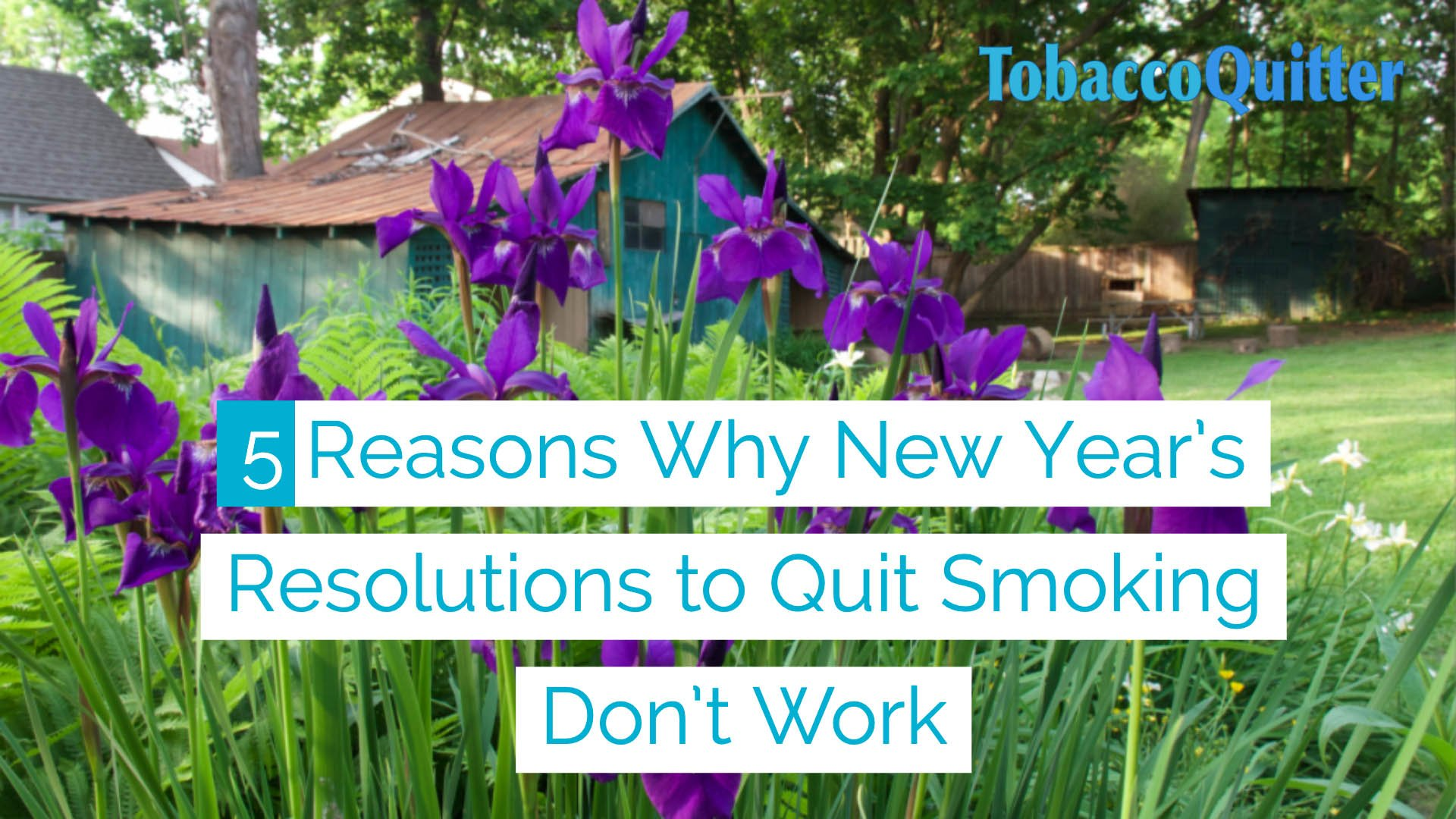 5 Reasons Why New Year's Resolutions to Quit smoking don't work.